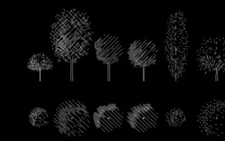 Grupo de: árboles gráficos