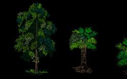 Grupo de: plantas tropicales