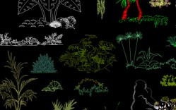 Grupo de: plantas y flores