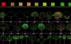 Grupo de: vegetacion truecolor