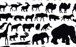 Animales en  Vector