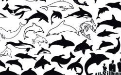 animales_delfines en vector
