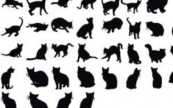 Gatos en Vector
