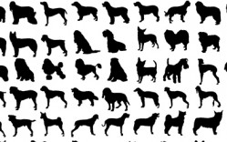 Perros en Vector