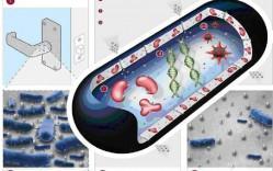 Propiedades de las manillas G-U con recubrimiento antibacterial - G-U