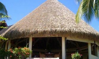 Cubiertas de Hoja: Aloha